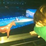 Oyuncak at öğreniyor