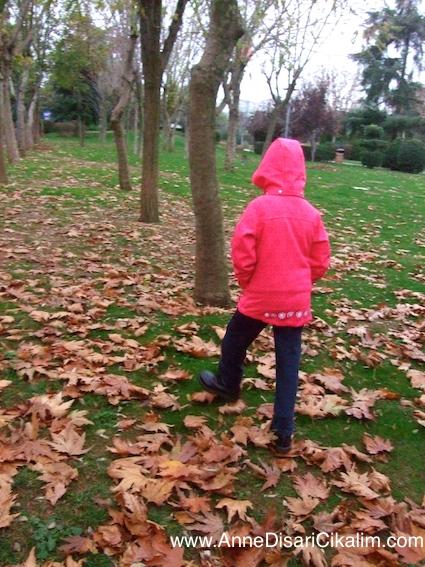 sonbahar kuru yapraklarin uzerinde gezinti1